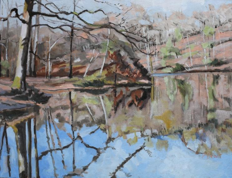 Etang en forêt de Rambouillet, février TsP 15P (65 x 50 cm) 2013