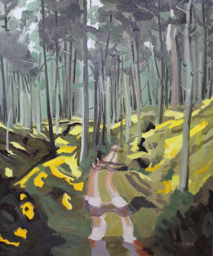 Forêt de Biscarosse TsP 15F (65 x 54 cm) 2013