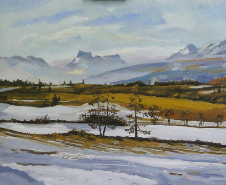 Plateau d'Ancelle en janvier TsC 20F (73 x 60 cm) 2008