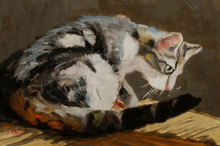 chat en observation - peinture à l'huile PBenet